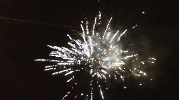 Les détonations des feux d'artifice terrorisent les animaux domestiques.