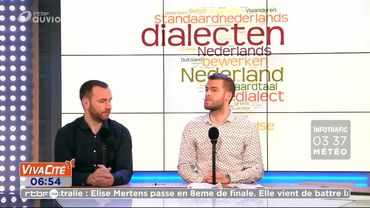 """Wat zeg je ? Ik begrijp niet"", tous ces dialectes flamands..."