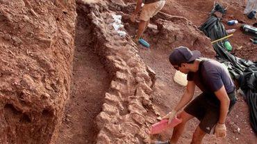 Des fossiles vieux de 98 millions d'années ont été découverts, dans la formation de Candeleros dans la vallée de la rivière Neuquen, dans le sud-ouest de l'Argentine, le 20 janvier 2021 (photo de l'Agence de sensibilisation scientifique CTyS-UNLaM)
