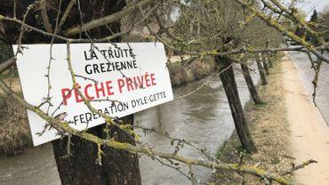La pluie tombée en abondance a fait monter le niveaux des rivières, l'eau charrie du sable et des déchets, les poissons se cachent.