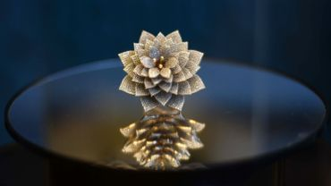 Une bague en forme de fleur où scintillent plus de 12.000 diamants a fait son entrée dans le Guinness mondial des records.