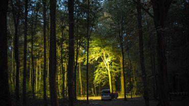 Dans la forêt de Hambach, en Allemagne