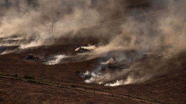 L'Institut spatial national du Brésil, l'INPE, a identifié 6.803 incendies dans la région amazonienne en juillet 2020.