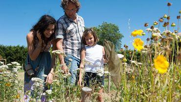 La Provence au printemps: les bons plans du Vaucluse!