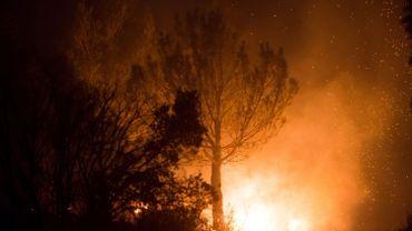 Des pompiers luttent contre un incendie près d'Aubagne (Marseille)