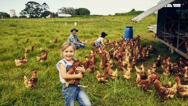Visiter une ferme en famille? Ce week-end, 72 fermes wallonnes ouvrent leurs portes