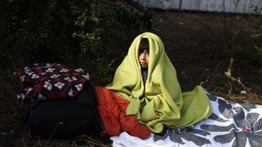 577 307 demandeurs d'asile depuis janvier en Allemagne