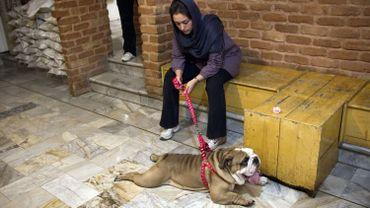 Une jeune Iranienne avec son chien dans la première clinique vétérinaire d'Iran, en juin 2011