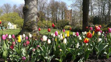 Le domaine de Grand-Bigard accueille la 16e édition de l'exposition Floralia.