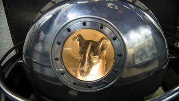 Le 3 novembre 1957, Laïka revêtue d'une combinaison bardée de capteurs, quitte la Terre à bord de la capsule soviétique Spoutnik-2 pour un voyage sans retour.