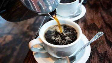 La consommation de café est significativement associée à une probabilité inférieure de rigidité du foie.