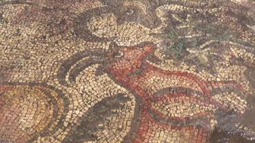 Turquie: des fermiers découvrent par hasard une mosaïque romaine