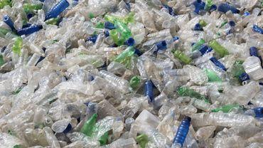 A la gare de bus de Guayaquil (sud-ouest), poumon économique de l'Equateur, les usagers peuvent échanger des bouteilles en plastique contre des tickets de bus.