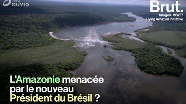 Brésil: l'Amazonie menacée par l'élection de Jair Bolsonaro