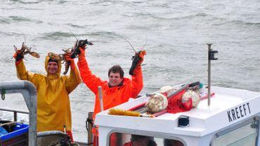 Ouverture de la saison de la pêche au homard de l'Escaut oriental. Le trésor méconnu de Zélande