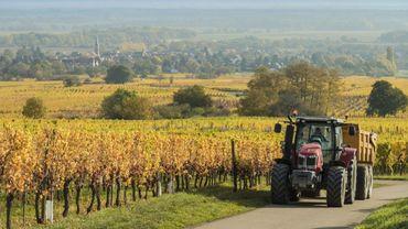 Réforme du bail à ferme en Wallonie: 500.000 hectares de terres agricoles concernées