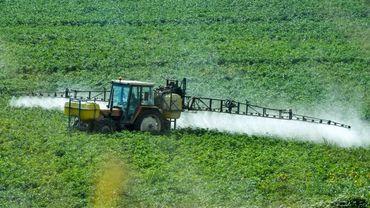 Une agriculture (presque) sans pesticides en Wallonie, est-ce possible ?