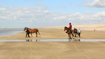 Ce samedi, Grandeur Nature traverse la Baie de Somme !