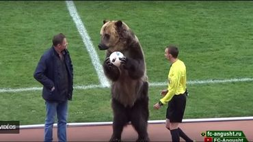 Scène surréaliste en D3 russe : un ours brun donne le ballon du match à l'arbitre