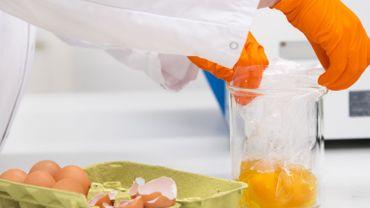 Oeufs contaminés par un insecticide: les premiers résultats sont rassurants