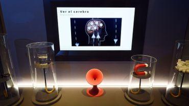 Une expo sur le cerveau qui n'a rien d'une prise de tête