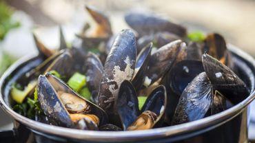 La vraie recette des Moules marinières (Utlra simple et rapide)