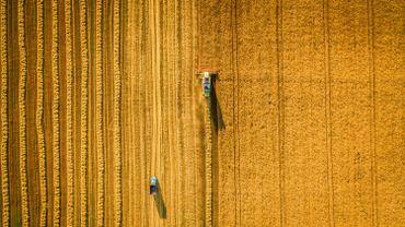 BioWanze: demain, une mousse à raser produite à partir de son de blé