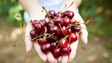 10 fruits qui aident votre métabolisme à brûler des graisses
