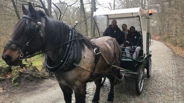 Olivier, Julien et Audry démarrent leur tournée avec Jeff, cheval de trait brabançon