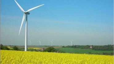 Enercoop, Vent d'Houyet... l'argent des éoliennes coopératives s'est-il envolé ?