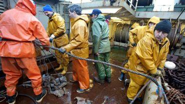 Plusieurs organisations environnementales et de pêcheurs accusent la Commission européenne d'avoir cédé aux lobbies néerlandais de la pêche industrielle