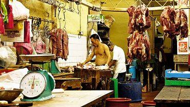 Chine: du rat et du renard pour de la viande de boeuf, 900 arrestations