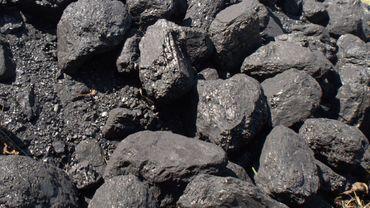Amincie et tout-sourire, elle a vu un camion crasseux Kamaz décharger les cinq tonnes de charbon près de sa maison.