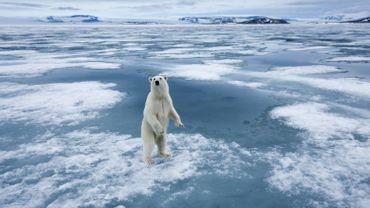 On a sous-estimé les risques du changement climatiques selon des chercheurs belges