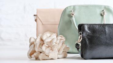 """Le """"cuir"""" de champignon constitue une alternative éthique et durable au cuir animal."""