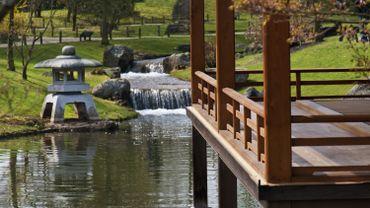 La balade de Carine : Hasselt, le plus beau jardin japonais d'Europe