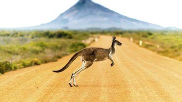 L'Australie, destination de 2020 selon le magazine Travel + Leisure