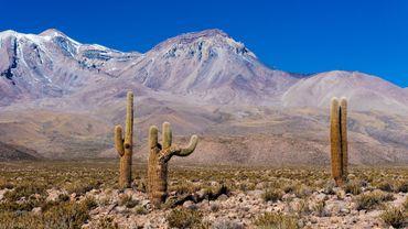 """Le """"grand nord"""" chilien est un poumon économique du pays"""