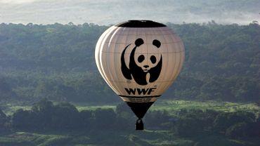 """World Wildlife Fund ( WWF) est partenaire de """"Our Planet"""""""