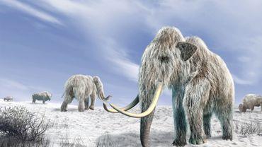 Voici de quoi occuper votre enfant cet été : laissez le chasser le mammouth ou combattre en gladiateur !