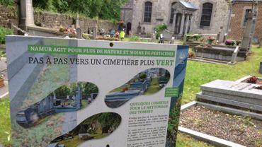 Vers des cimetières végétalisés