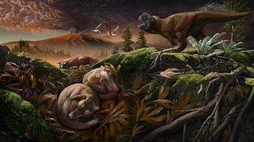 Une reconstruction de l'habitat de l'animal Origolestes lii, il y a 125 millions d'années, dont les oreilles internes ont été analysées par une équipe de scientifiques chinois dans un article paru dans la revue Science le 5 décembre 2019