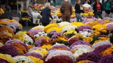 Toussaint - Les fleuristes font grise mine