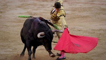 Les députés espagnols acceptent de discuter de la protection des corridas