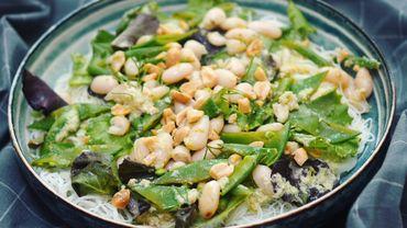 Salad Bar : salade de vermicelles, haricots blancs et haricots mange-tout