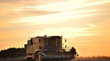 Le CTA propose une formation gratuite en argroforesterie à Strée