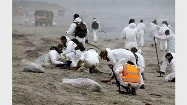 Nettoyage de la plage de Papamoa, près de Tauranga, le 12 octobre 2011 en Nouvelle-Zélande