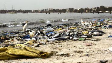 Le WWF presse les dirigeants méditerranéens de l'Union européenne à prendreun engagement commun contraignant pour protéger la mer Méditerranée