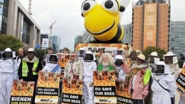 La mobilisation en faveur des abeilles portera-t-elle ses fruits