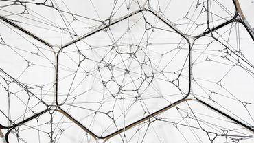 """Tomás Saraceno, """"One Module Cloud with Interior Net"""", 2015, Tanya Bonakdar Gallery"""